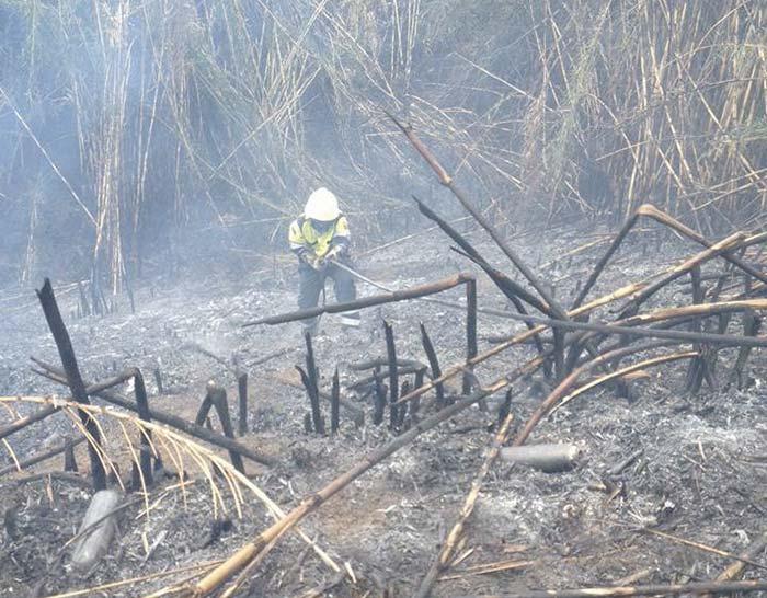 Incendio sotto la stazione di Tivoli, i volontari Avrst in azione