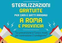 Sterilizzazioni gratuite a Roma