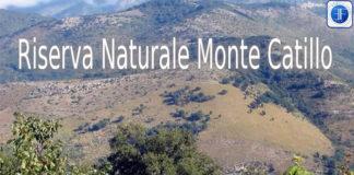 Monte Catillo