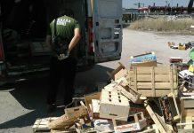 Guardie ambientali di Tivoli in azione a Guidonia Montecelio