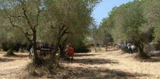Volontario di protezione civile muore su un incendio, il rogo a Roccagiovine