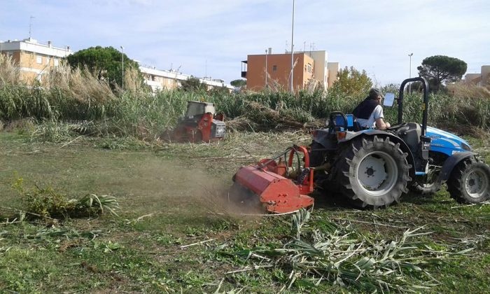 Bosco del Fauno, lavori in corso
