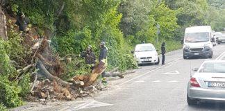 Tiburtina bloccata per un albero caduto