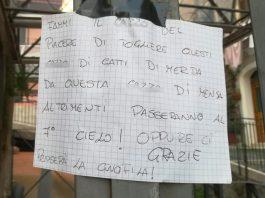 Le minacce ai gatti nel centro storico di Tivoli