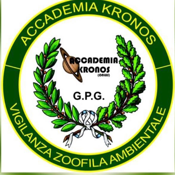 Accademia Kronos